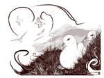 Holborn Fulmars Sketches