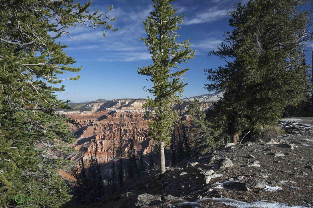 Cedar Breaks, Utah by katu01