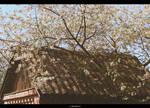 Flower Roof