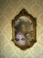 What The Mirror Can See