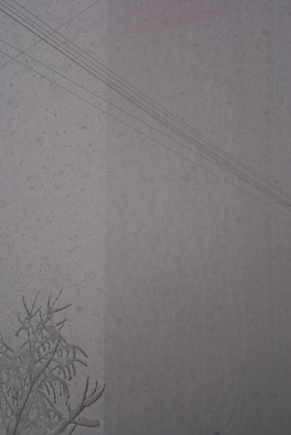 Snowfall by tonixart