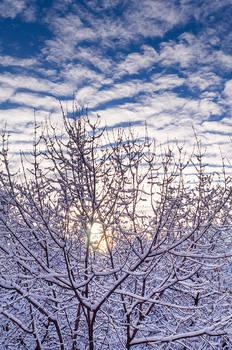Sky Sun Snow
