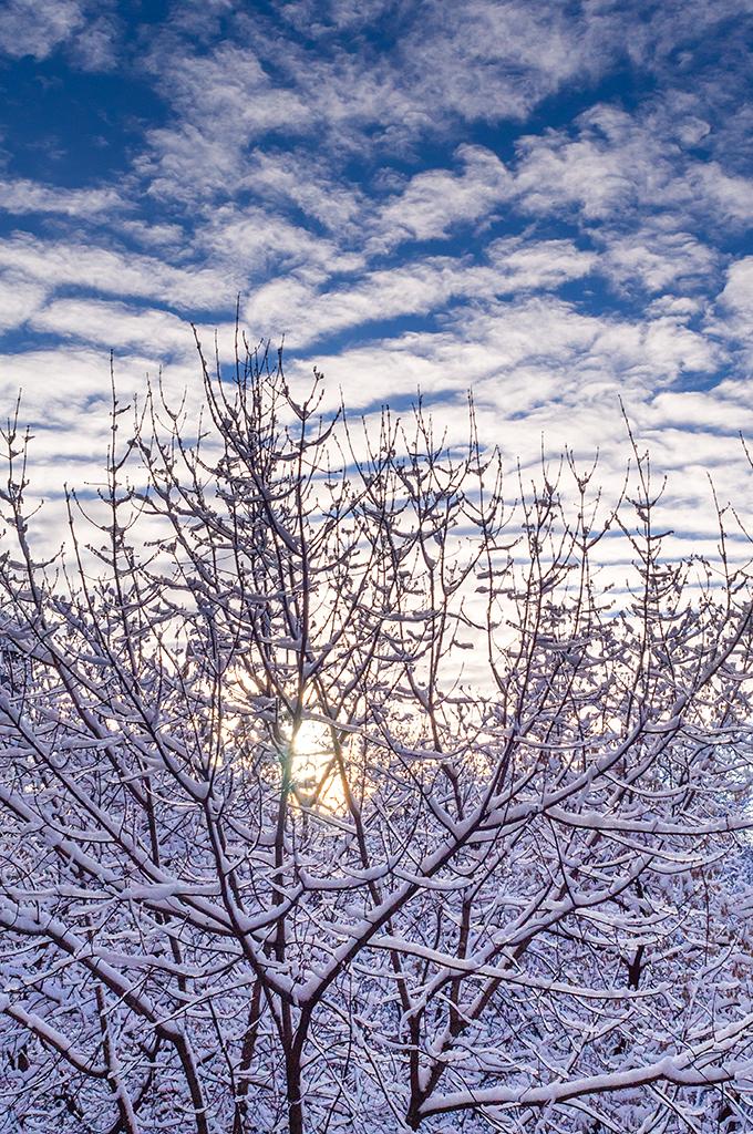 Sky Sun Snow by tonixart