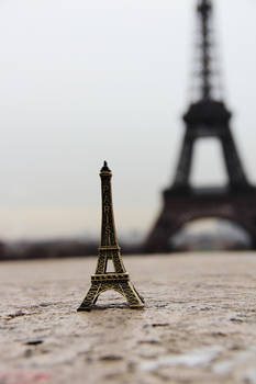 Shadow of the Paris