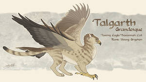 Talgarth Reference Sheet