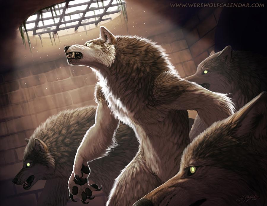 Dark Places by Kyndir