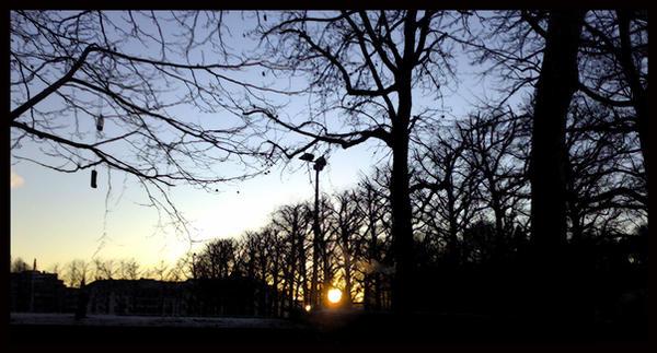 sunrise by Ice-Wulf