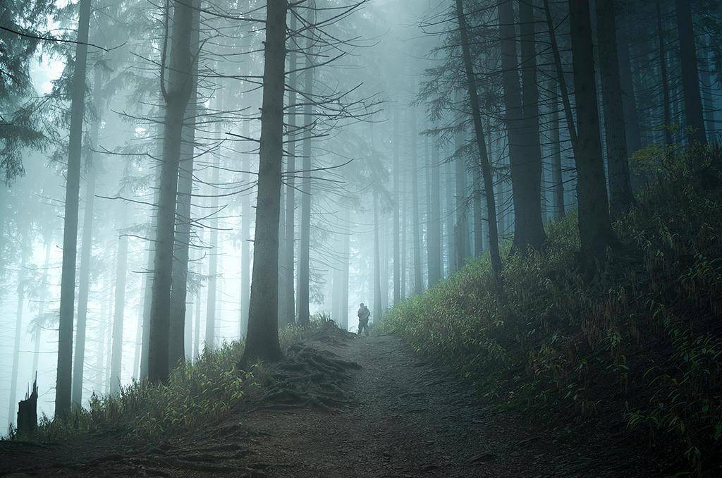 alone by jacekson