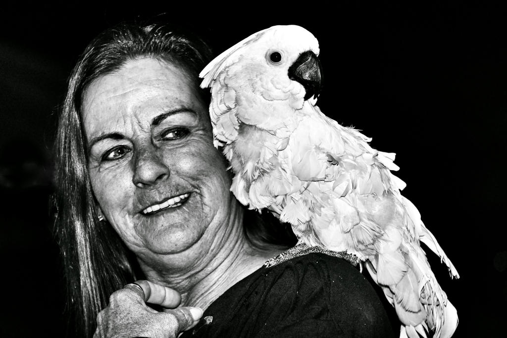 Lady and Bird by BoggyRoads