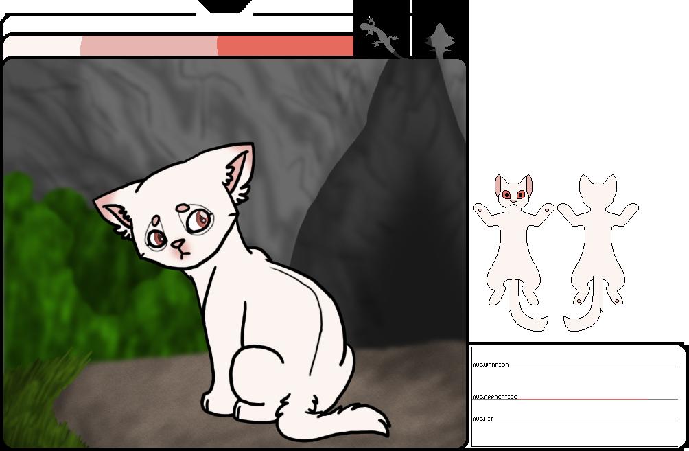 [wb]Lostpaw|med cat apprentice by millemusen