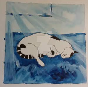 Catnap in the sun (2018)