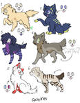 canine adoptables