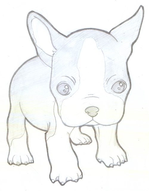 Cute Boston Terrier Coloring Pages Coloring Pages Boston Terrier Coloring Pages