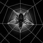 The Devil's Web