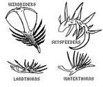 Polypod Descendants for Rodlox