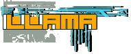 Llama Logo by dAcenter