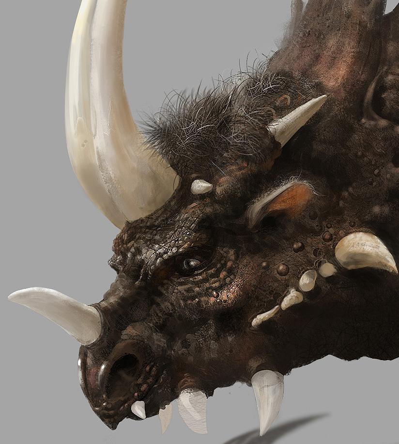 Monster's head by mingrutu