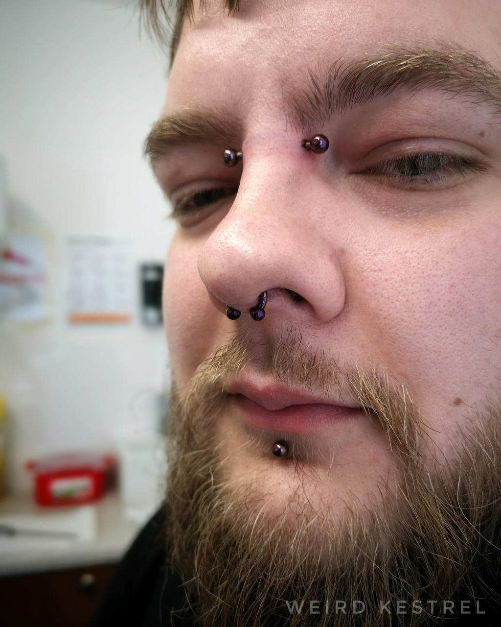 Bridge And Septum Piercing By Weirdkestrel On Deviantart