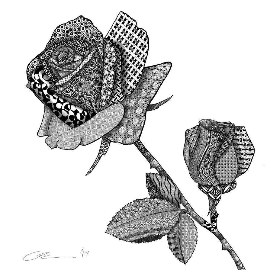 Zentangle Rose Doodle By Christofferbaker On Deviantart