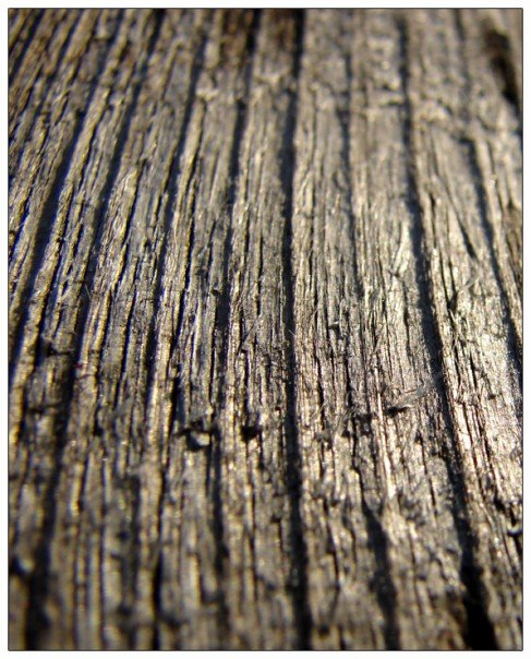 Wood Texture by JonMnenonic