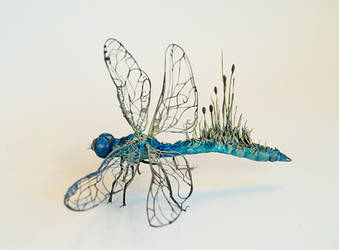 Dragonfly2 by creaturesfromel