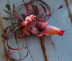 Snail process shot