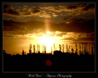 Gold Dust by RealmKnight