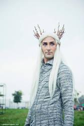 Thranduil-The Elven King