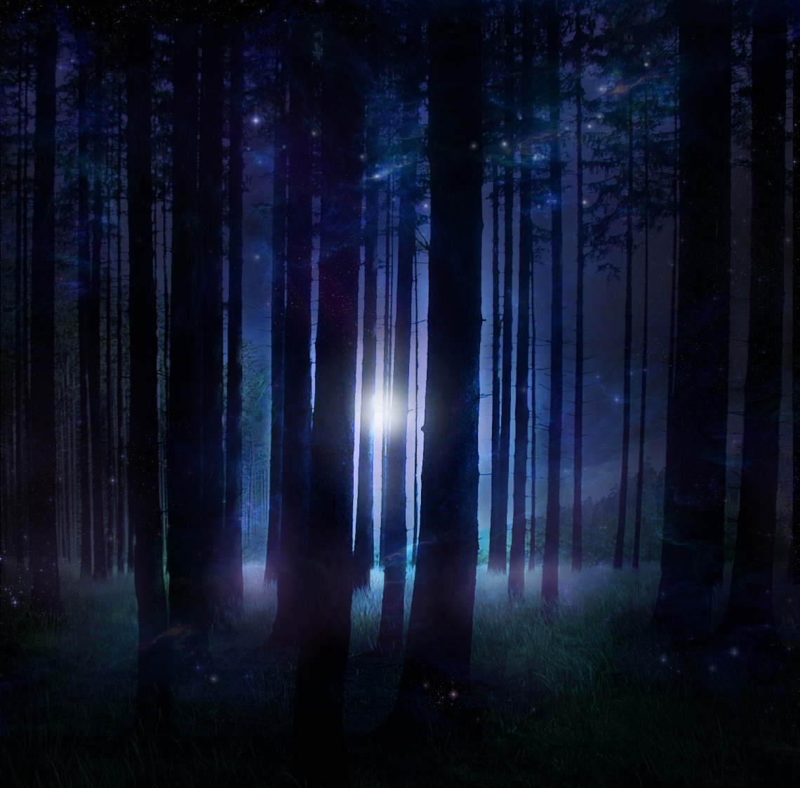 Magical Forest STOCK by wyldraven on DeviantArt