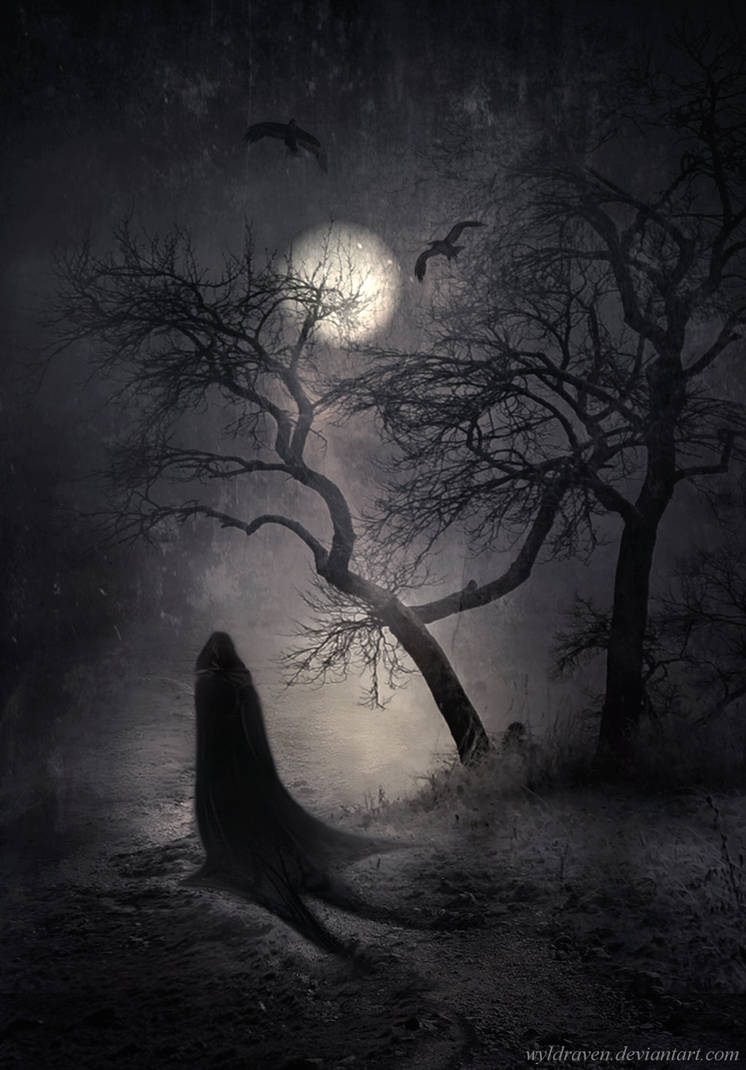 Nocturnal Whisperings