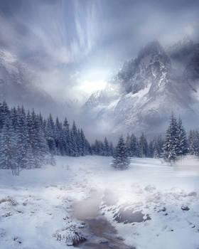 Winter Scene Stock