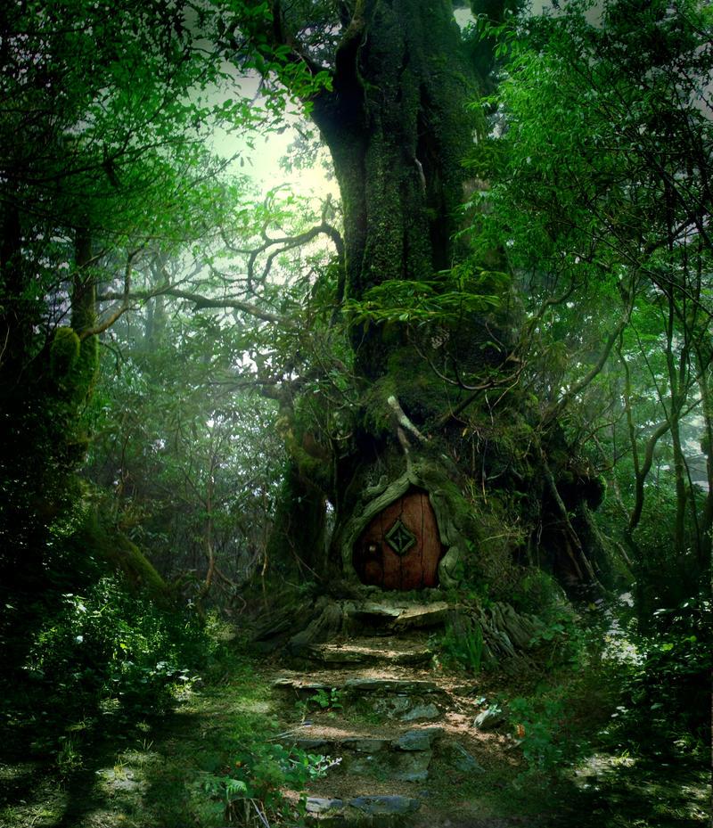Forest Door Stock by wyldraven