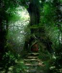 Forest Door Stock