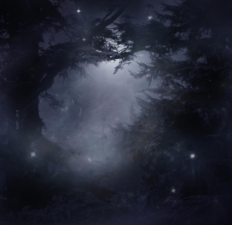 Mystical Forest Stock by wyldraven on DeviantArt
