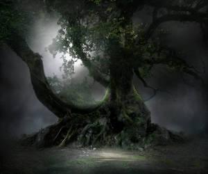 Spooky Tree Stock