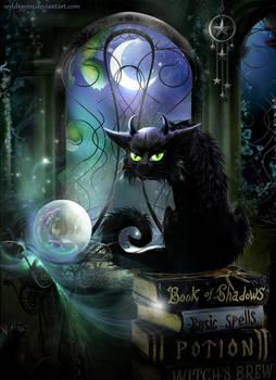 Oracle Of Salem