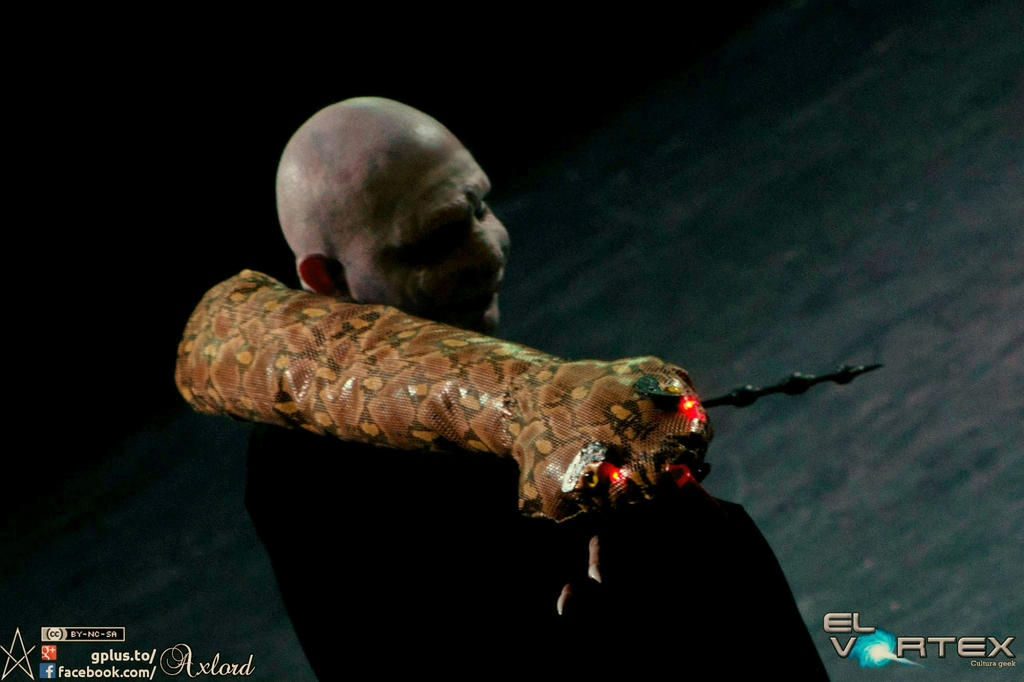 Lord Voldemort by cerezosdecamus