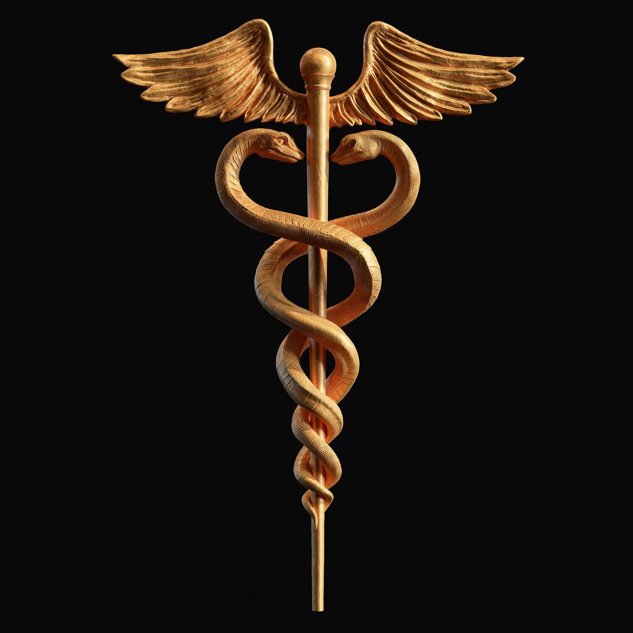 Caduceus Medical symbol 3d print model by doubleagent2005 on DeviantArt