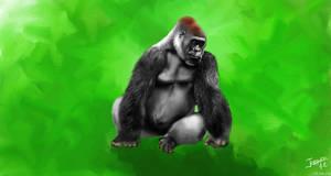 lowland gorilla by Jemura42
