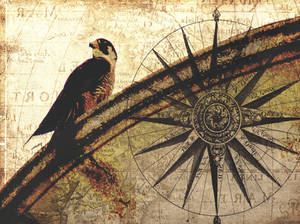 Falcon Retro Vintage