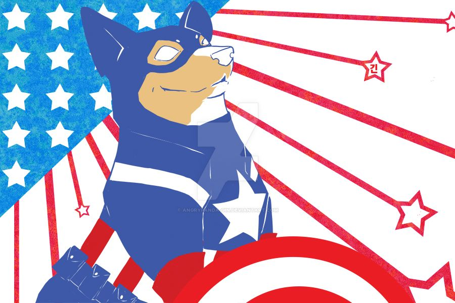 Captain America Corgi edition by Angrypanda-Gin