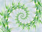 Feary Fractals