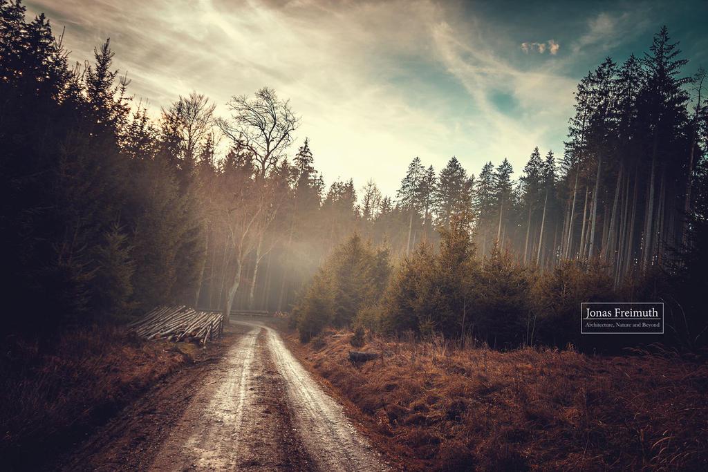 Hazy Woods (reworked) by Cormocodran15