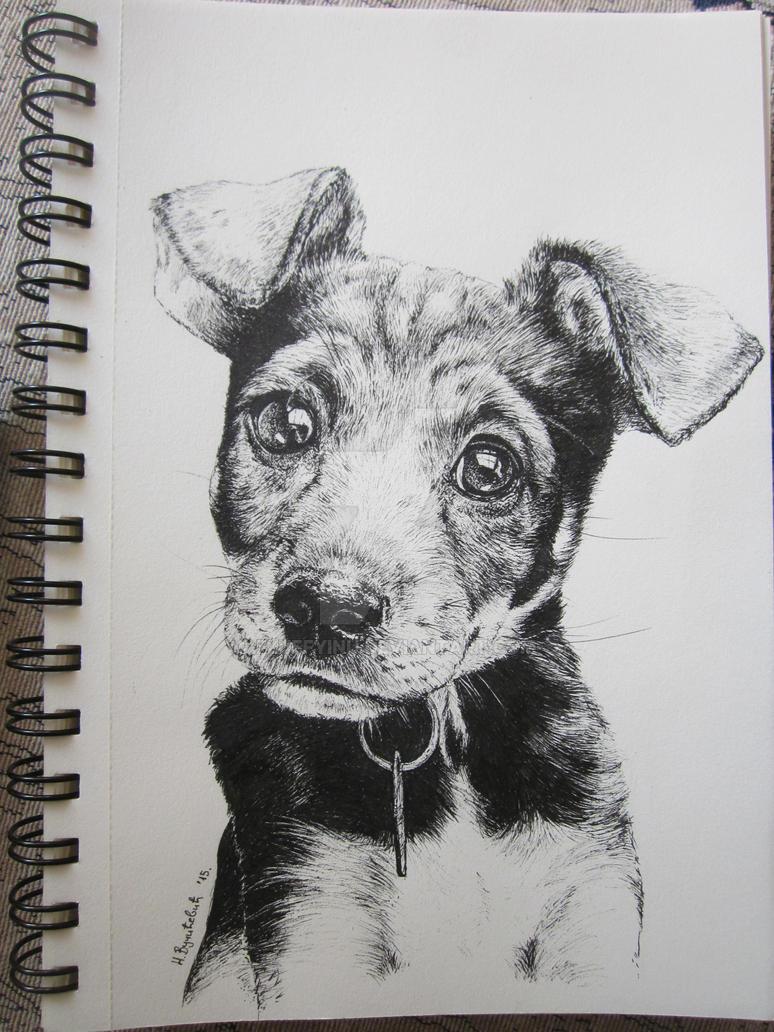 Puppy by FluffyInu