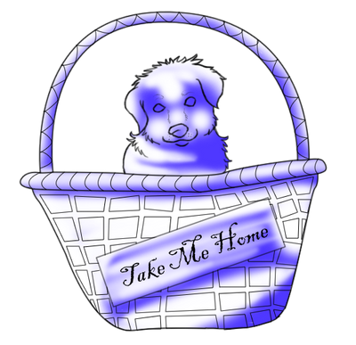 Puppy in a Basket pose by xArcox
