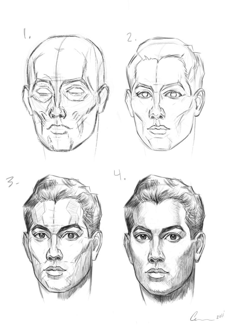 Learning to Draw Heads: Practice and Study with Skulls and ...