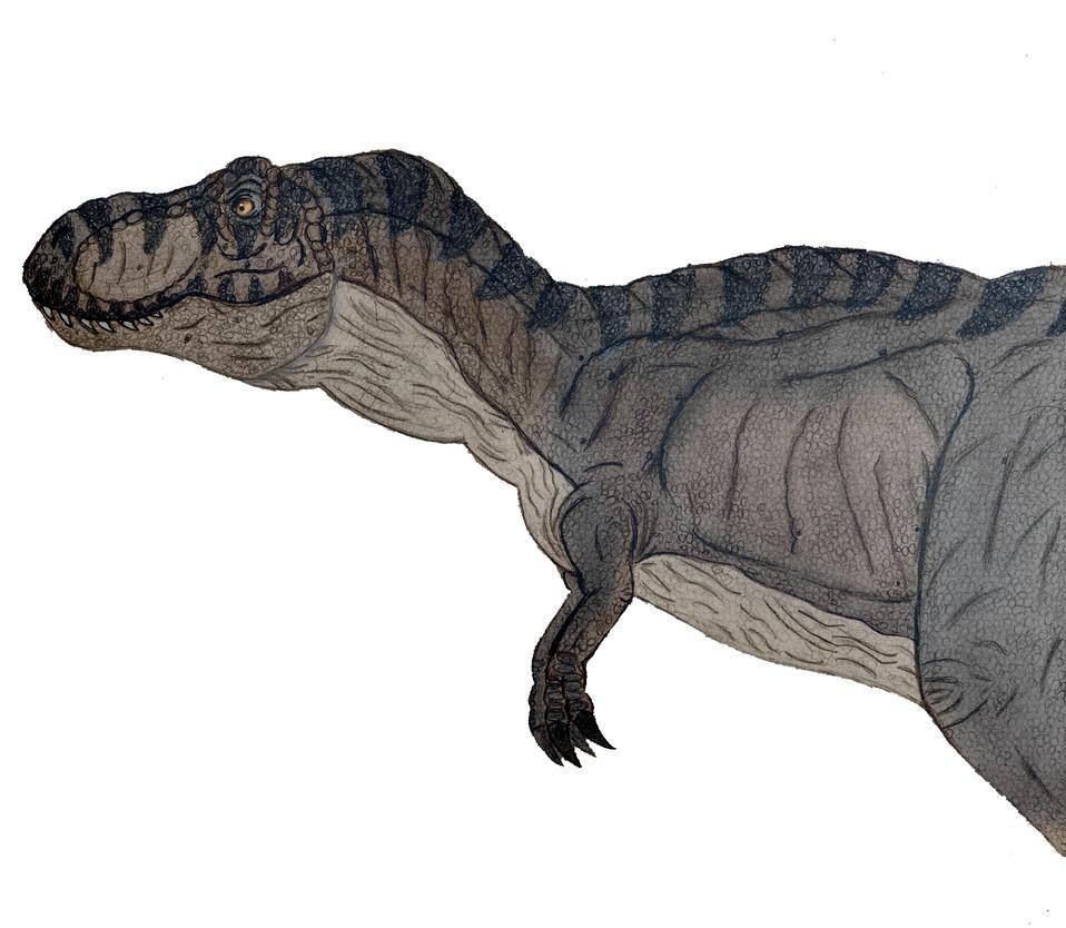 Black T-rex jurassic park by Rodrigovg3