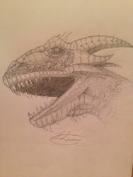 Dragon by DracoSwoordMaster123