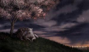 Commission: Wolf Mates VI