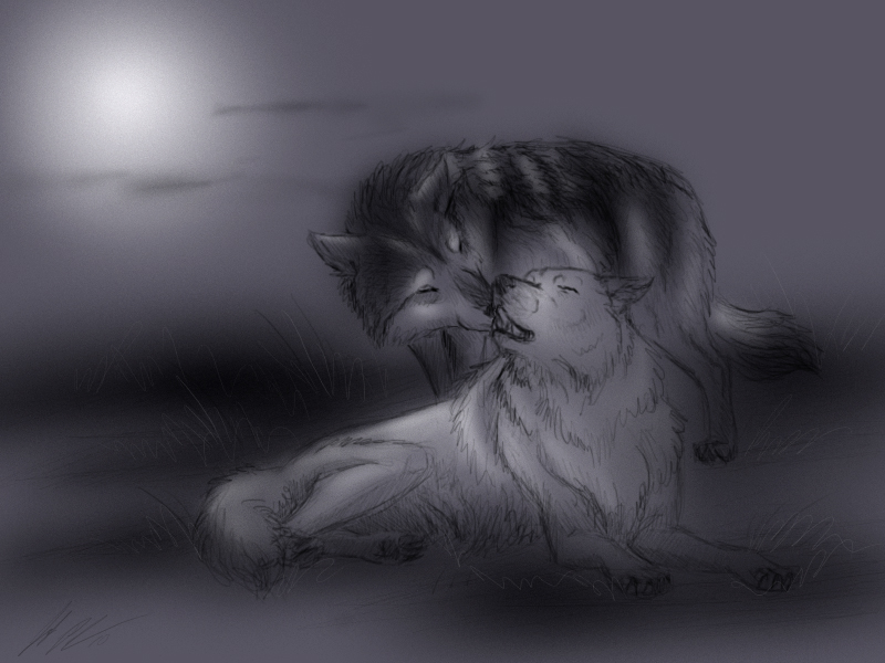 White Wolf And Black W...